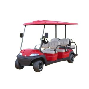Пассажирский Электрокар Carry 4+2