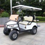 Внедорожный гольфкар Element Off Road